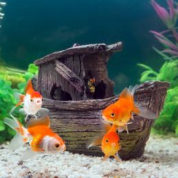 Оформление и дизайн аквариумов