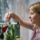 Домашний аквариум для новичков